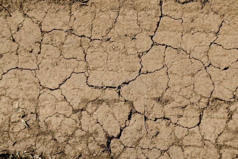 Textur av torr brun sprucken jord Brist av fuktighet på jorden, torka Begreppet av uttorkningland Foto som tapeten royaltyfri foto