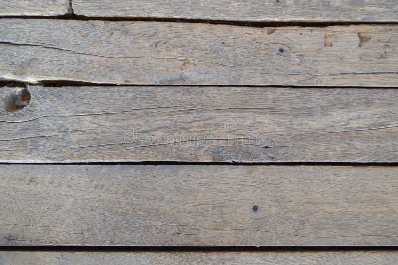 Textur av träomålade gamla bräden med sömmar, sprickor och att spika lock grönska för abstraktionbakgrundsgentile royaltyfria bilder
