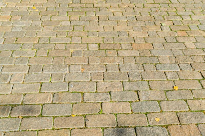 Textur av trottoar från en naturlig sten royaltyfri bild