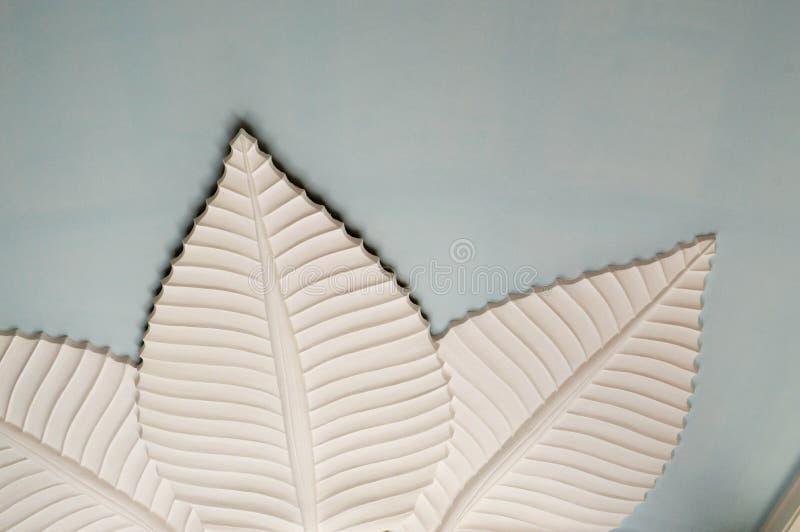 Textur av vita stensidor av blommaväxter på en vägg av ett tak från dekorativ sniden murbrukmassa texturerade bakgrund arkivfoton