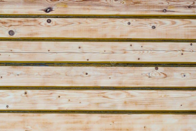 Textur bakgrund, timmerväggen, ljust trä, sörjer royaltyfri foto