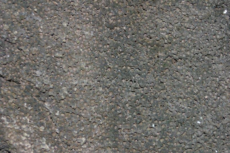 Textur För Bakgrundsrocksten Royaltyfri Fotografi