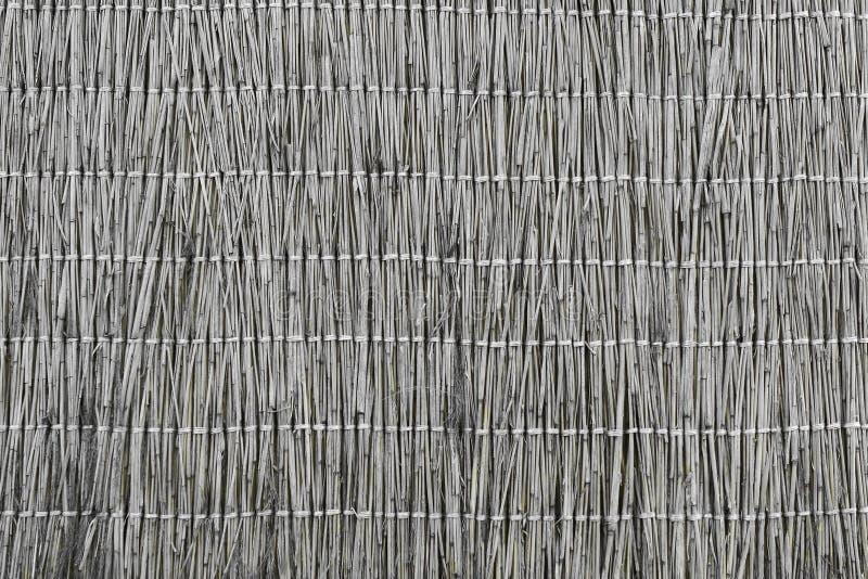 Textur för designrottingstaket - nätt abstrakt fotobakgrund royaltyfri fotografi