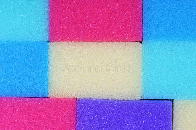 Textur för lokalvårdköksvamp som bakgrund Flerfärgade svampar för färgrika gula blått för rosa färggräsplanlilor Nära övre makro fotografering för bildbyråer