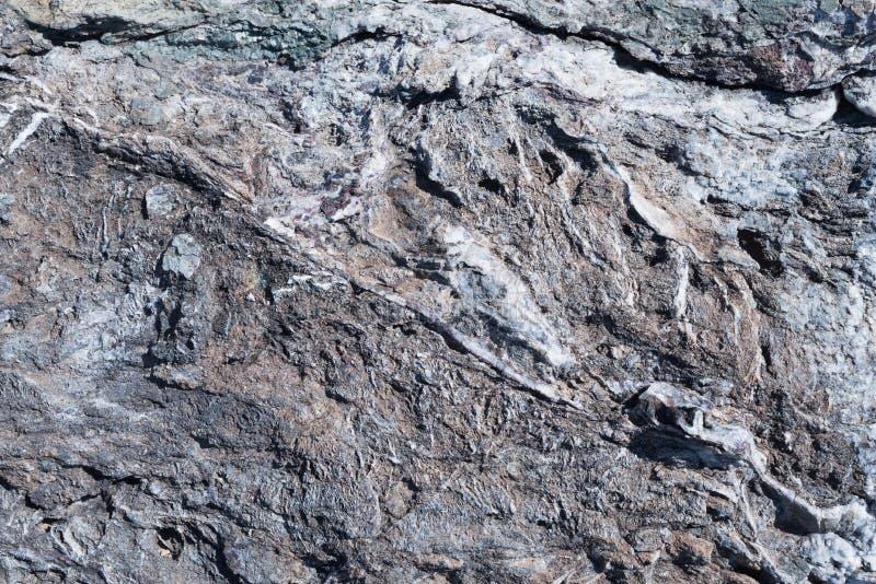 textur för mossrocksten Stående av en grå sten arkivfoto