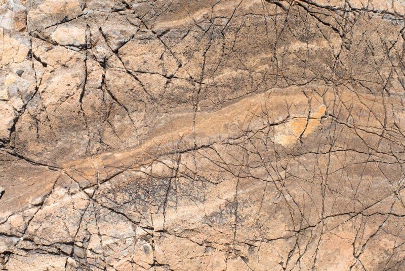 textur för mossrocksten Stående av en röd sten fotografering för bildbyråer