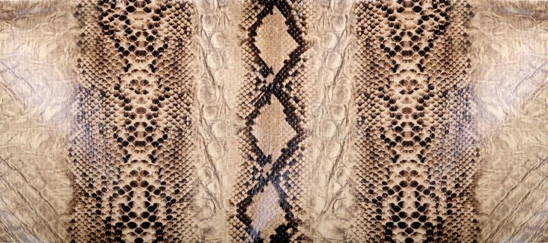 Textur för ormhud royaltyfria bilder
