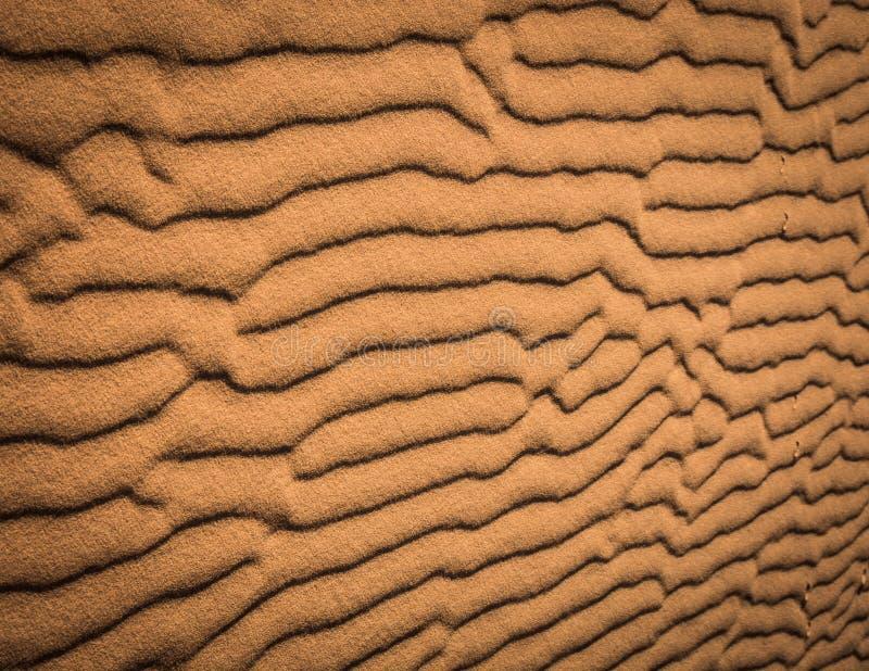 Textur för Sahara öken, orange sandmodeller royaltyfria foton