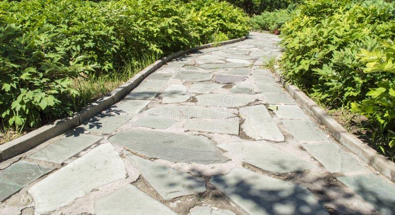 textur för solljus för sten för asfaltbakgrundsväg passande royaltyfri bild