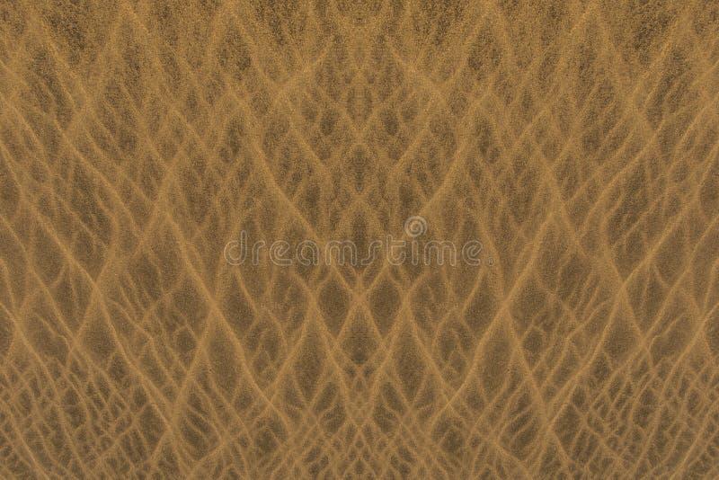 Textur f?r sanddyn royaltyfri bild