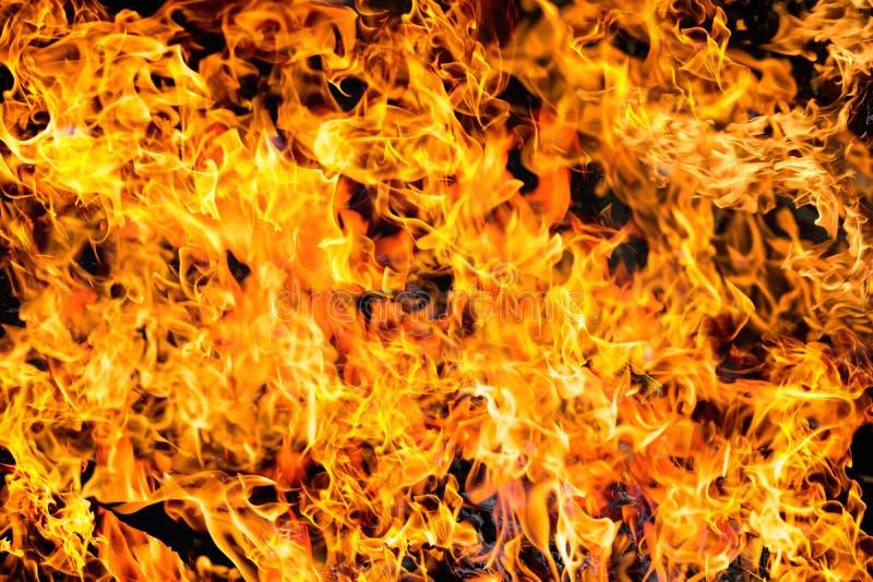 Textura abstracta de la llama del fuego del resplandor para el uso del fondo foto de archivo libre de regalías