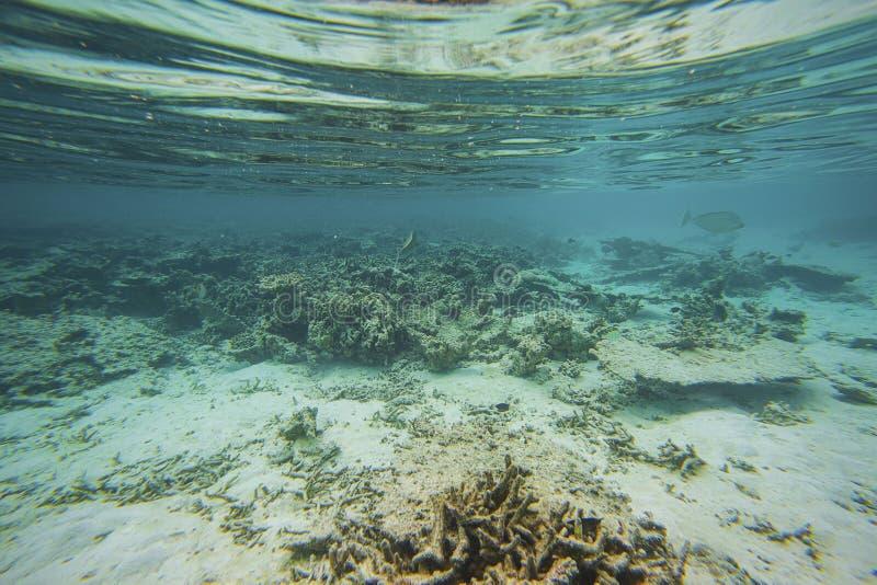 Textura abstracta hermosa del fondo de la vista subacuática de la parte inferior blanca de la arena y del agua azul El bucear, Ma imagenes de archivo