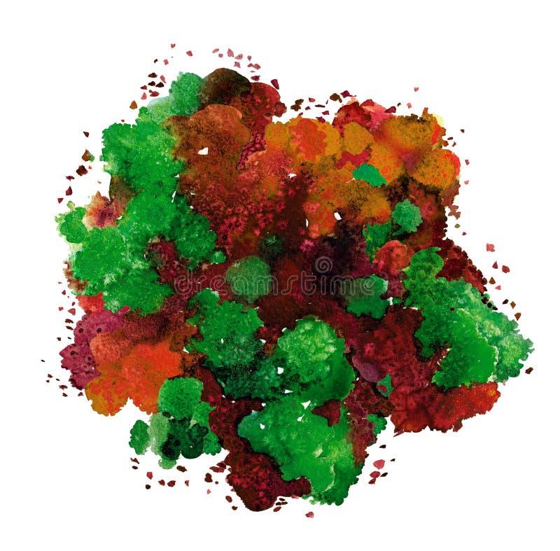 Textura abstrata da aquarela, formul?rio bi?nico, cor din?mica alaranjada e verde Tamanho grande Para o fundo Isolado no branco ilustração stock