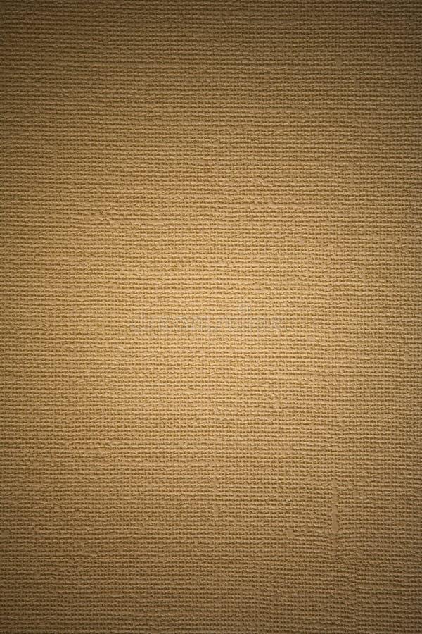 Textura abstrata da lona velha ilustração do vetor