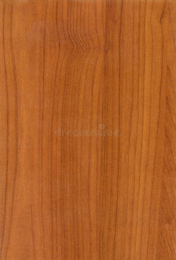 Textura académica de madeira da cereja imagem de stock royalty free