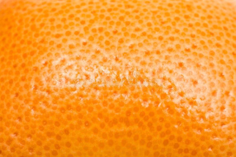 Textura alaranjada do fruto fotos de stock
