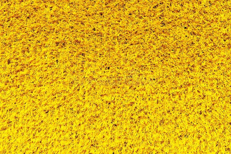 Textura amarilla de la alfombra foto de archivo libre de regalías