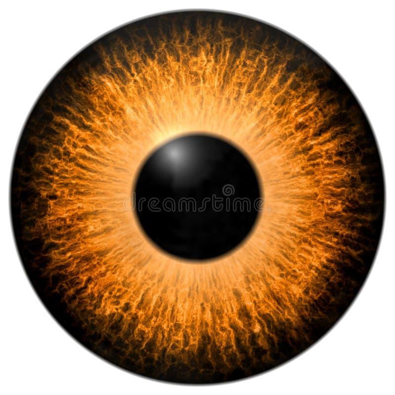 Textura anaranjada del ojo 3d con la franja negra ilustración del vector