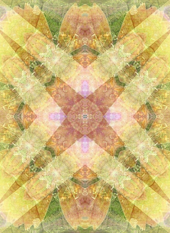 Textura antiga do laço da tela ilustração royalty free