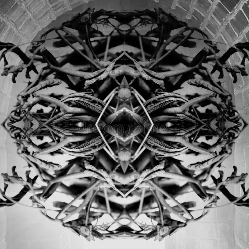 Textura blanco y negro oscura abstracta en forma redonda; formado en cara simétrica del monstruo imagen de archivo