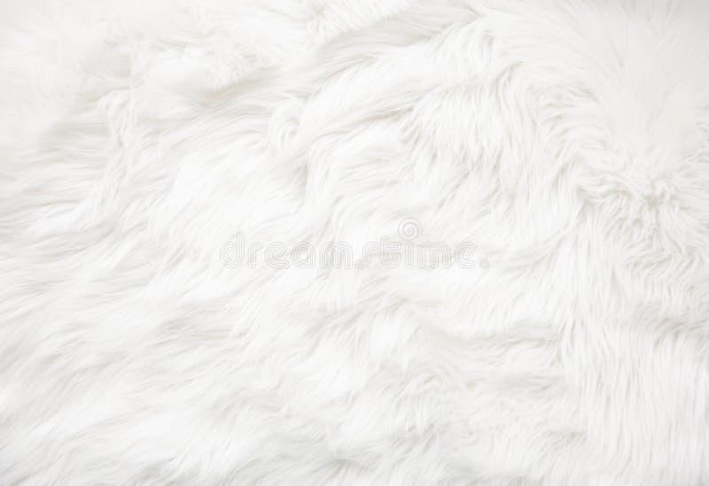 Textura branca da pele fotos de stock royalty free