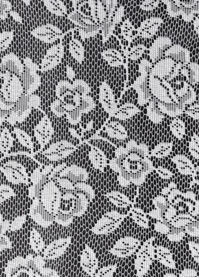 Textura branca das rosas do laço foto de stock