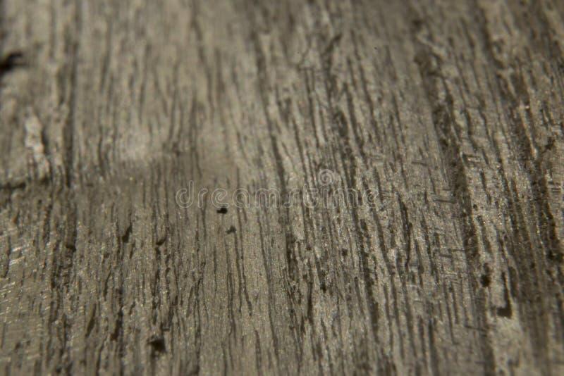 Textura cinzenta do fundo da superfície da madeira de carvalho foto de stock