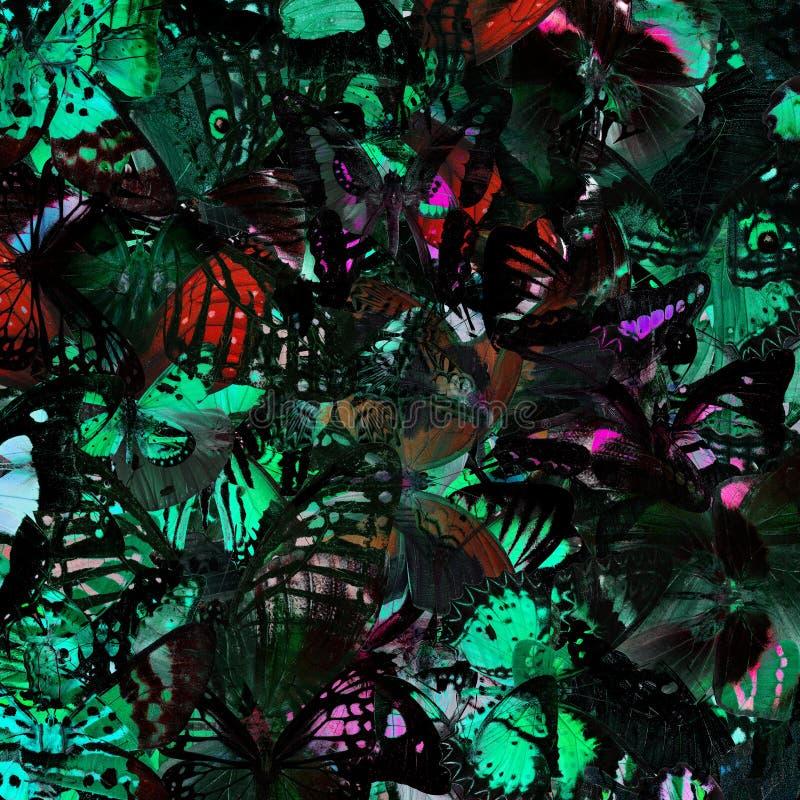 Textura cinzenta e verde exótica do fundo pela compilação de m fotos de stock