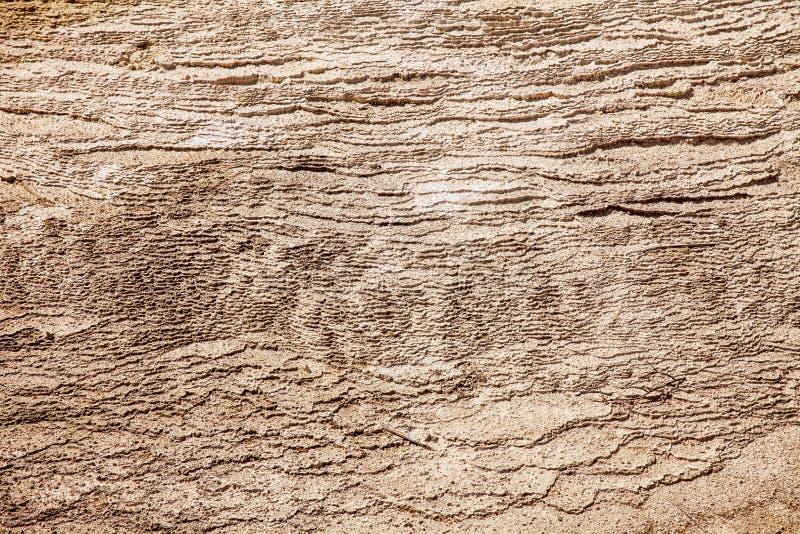Textura com camadas de carbonato de cálcio fotos de stock