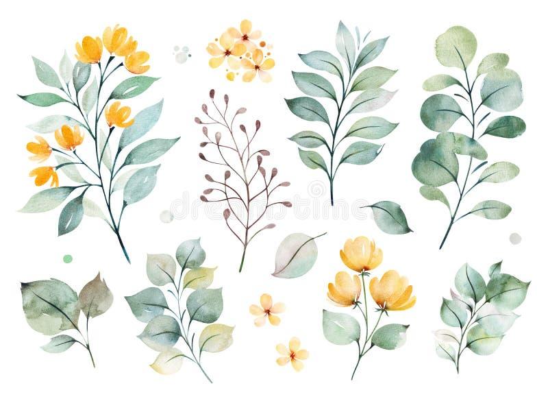 Textura com verdes, ramo, folhas, flores amarelas, folha ilustração do vetor