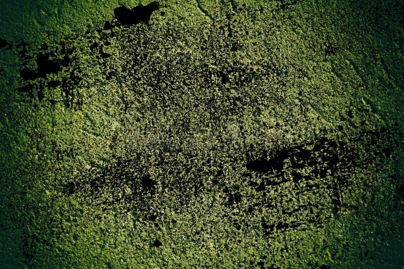 A textura concreta do emplastro do Grunge, superfície da pedra, balança fundo rachado para o cartão imagem de stock royalty free