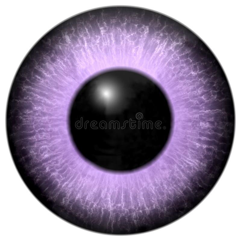 Textura cor-de-rosa e roxa da luz - do olho ilustração stock