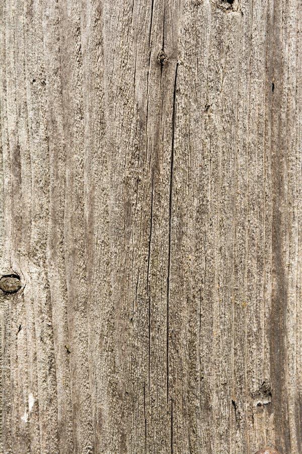 Textura da árvore velha com quebras longitudinais, superfície da madeira resistida antiga, fundo abstrato fotografia de stock royalty free