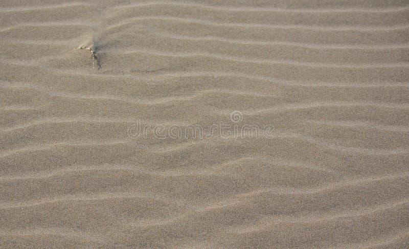 Textura da areia, fundo da areia com ondas imagem de stock