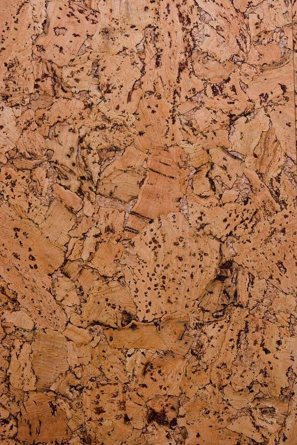 Textura da cortiça-placa. foto de stock royalty free