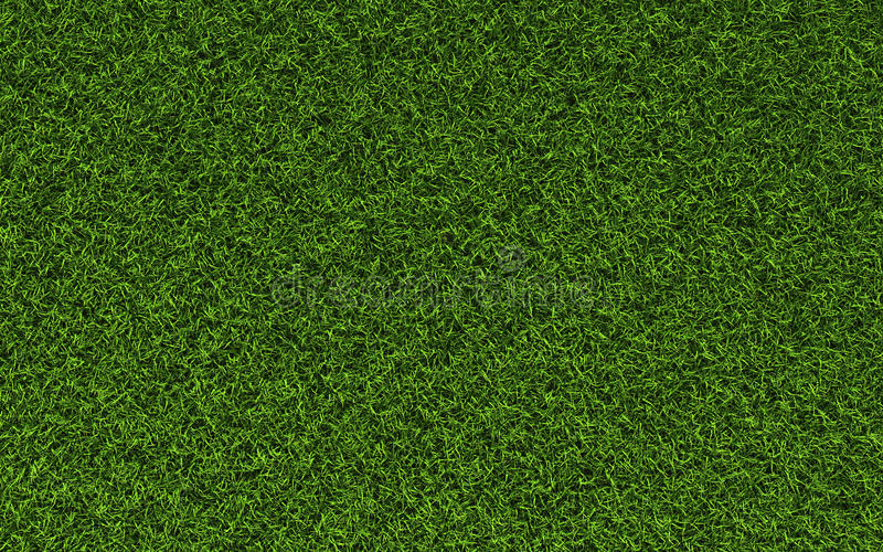 Textura Da Grama Imagem De Stock Imagem De Pattern Hires