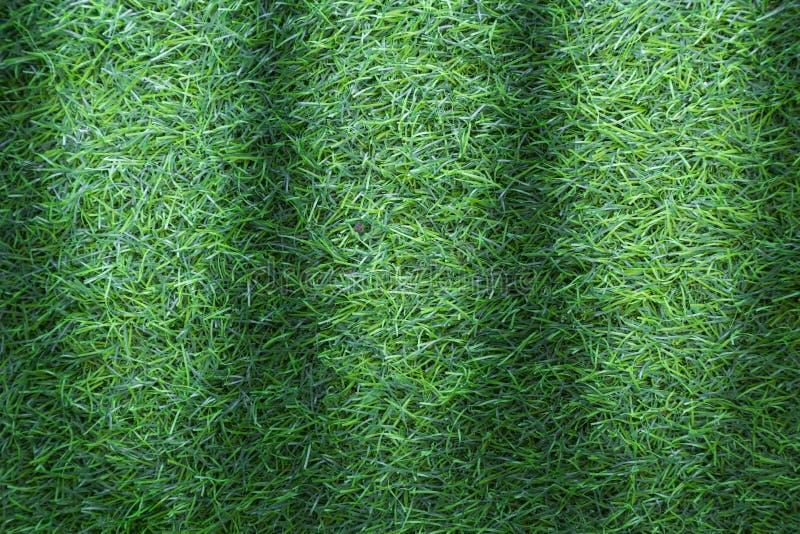 Textura da grama ou fundo da grama grama verde para o campo de golfe, o campo de futebol ou o projeto de conceito do fundo dos es fotos de stock