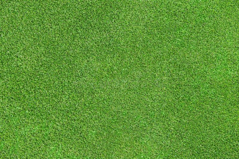 Textura da grama verde fotos de stock royalty free