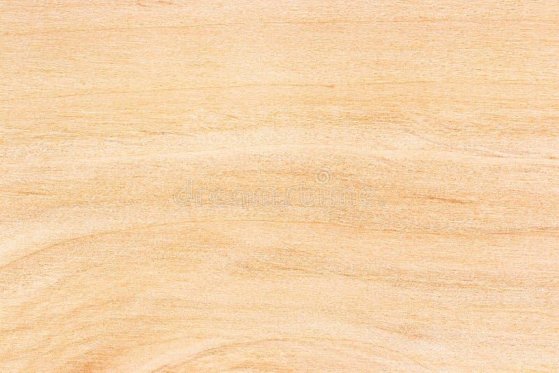 Textura da madeira compensada do vidoeiro fotografia de stock