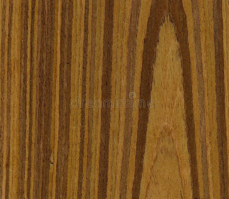 Textura da madeira da noz imagem de stock royalty free