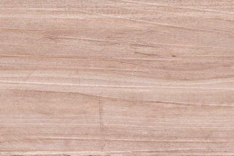 Textura da madeira da pera foto de stock