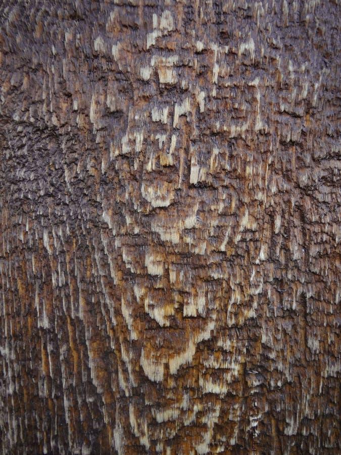 Textura da madeira de Brown Fundo de madeira escuro com gotas da água fotos de stock royalty free