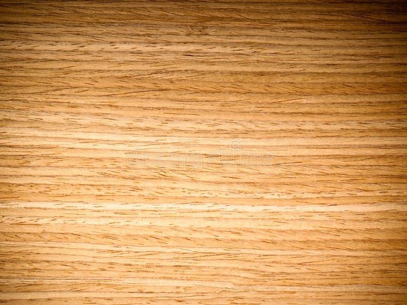 Textura da madeira de carvalho fotografia de stock