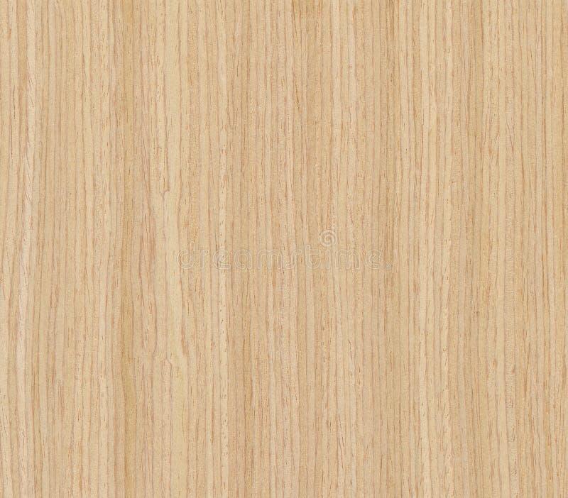 Textura da madeira de carvalho imagem de stock