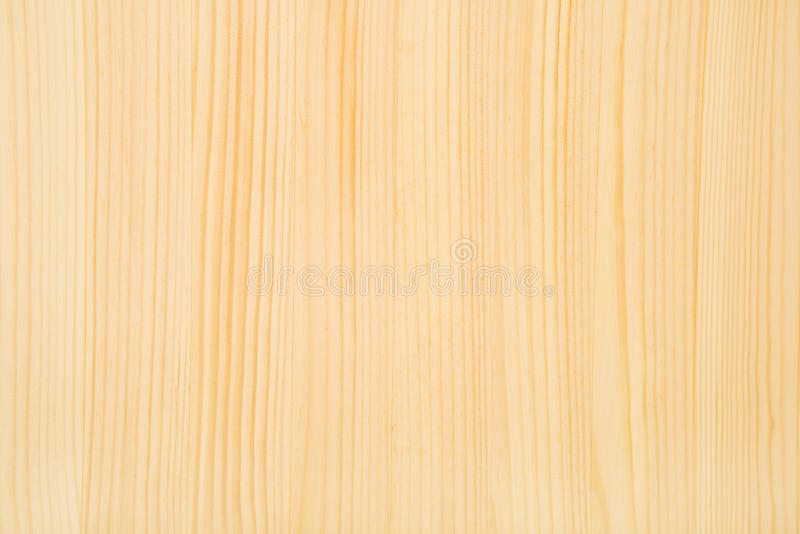 Textura da madeira de faia foto de stock royalty free