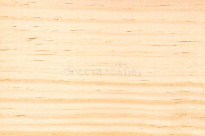 Textura da madeira de pinho imagem de stock