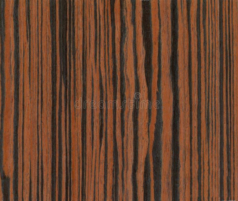 Textura da madeira do ébano fotografia de stock royalty free