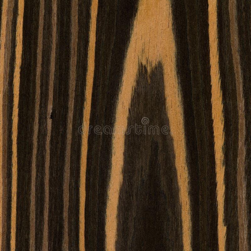 Textura da madeira do ébano imagens de stock
