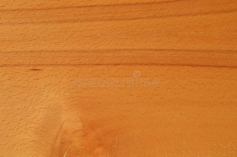 Textura da madeira do hornbeam de Brown imagem de stock royalty free