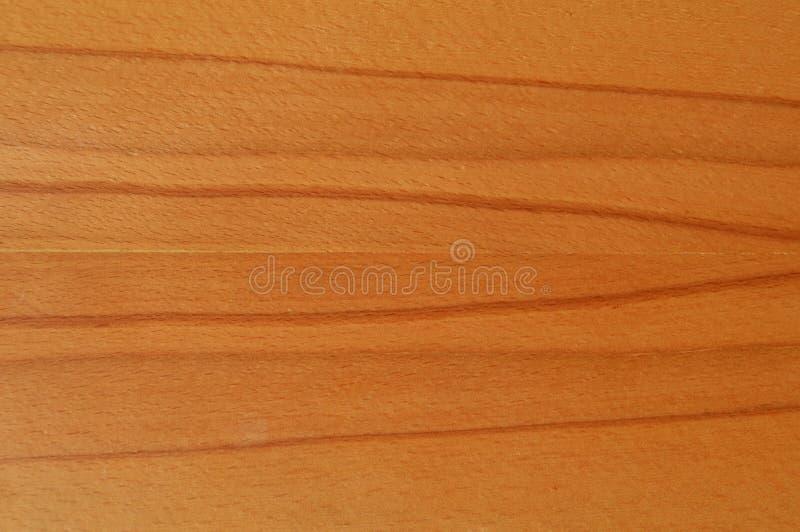 Textura da madeira do hornbeam de Brown fotografia de stock royalty free